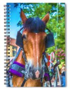 A Horse Of Course Spiral Notebook
