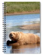 A Hot Day In The Hallo Bay Katmai National Park Preserve Spiral Notebook