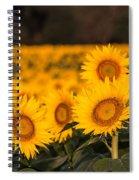 A Kansas Field Spiral Notebook