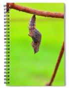 A Kell Spiral Notebook