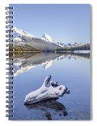 A Kiss Of Winter Spiral Notebook