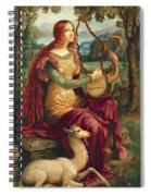 A Lady With A Unicorn Spiral Notebook