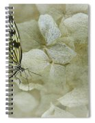 A Lighter Touch Spiral Notebook