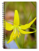 A Lilly In Bloom  Spiral Notebook