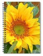 A Little Bit Of Sun Spiral Notebook