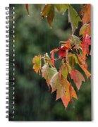 A Little Rain Must Fall Spiral Notebook