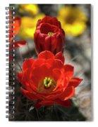 A Little Red Beauty  Spiral Notebook