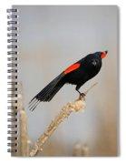 A Little Stretch Spiral Notebook