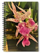A Living Orchid Looks Like Animal Print Doesnt It So Beautiful Spiral Notebook