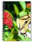 A Lovely Profile Spiral Notebook