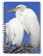 A Loving Couple Spiral Notebook