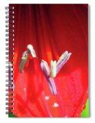 A Macro World Spiral Notebook