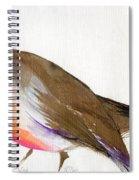 A Magical Little Robin Called Wisp Spiral Notebook