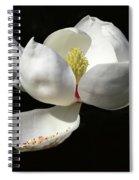 A Magnolia Flower Spiral Notebook