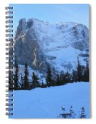 A Majestic Winter View Spiral Notebook