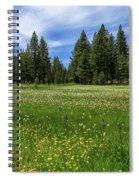 A Meadow In Lassen County Spiral Notebook