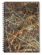 A Misty Rain In Autumn Spiral Notebook