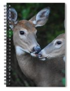 A Moms Touch Spiral Notebook