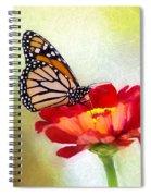 A Monarch Moment Spiral Notebook