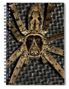 A Monkey On Its Back Spiral Notebook