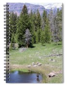 A Moose In The Rockies Spiral Notebook