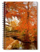 A Morning In Autumn - Lake Carasaljo Spiral Notebook