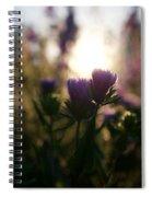 A Morning Light  Spiral Notebook