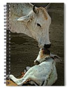 A Mother's Love Spiral Notebook