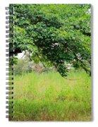 A Mulberry Summer Spiral Notebook