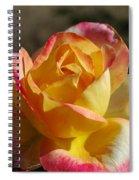 A Natural Beauty Spiral Notebook