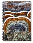 A Natural Landscape Spiral Notebook