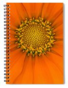 A New Day Spiral Notebook