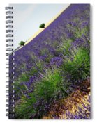 A New Slant On Life Spiral Notebook