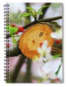 A New Start Spiral Notebook