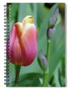 A New Tullip  Spiral Notebook