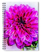 A Painted Dahlia Spiral Notebook