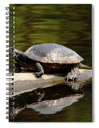 A Painted Reflection Spiral Notebook