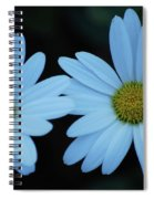 A Pair Of Daisies Spiral Notebook