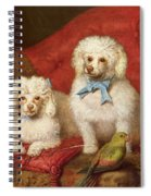 A Pair Of Poodles Spiral Notebook