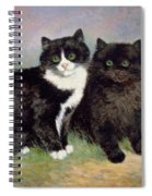 A Pair Of Pussy Cats Spiral Notebook