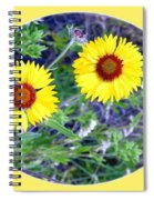 A Pair Of Wild Susans Spiral Notebook