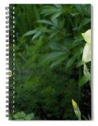 A Pair Of Yellow Bearded Iris 2 Spiral Notebook