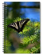 A Pale Swallowtail Spiral Notebook