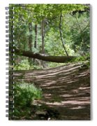 A Path In The Woods Spiral Notebook