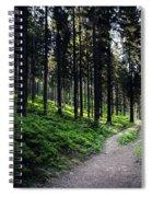 A Path Through A Dense Forest Spiral Notebook
