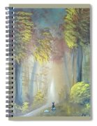 A Peaceful Journey Spiral Notebook