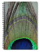 A Peek At A Peacock Feather Spiral Notebook