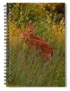 A Perfect Pair Spiral Notebook