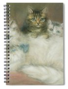 A Persian Cat And Her Kittens Spiral Notebook