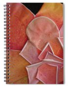 A Pink Experience Spiral Notebook